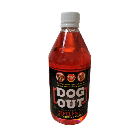 DOG-OUT-x-1-LT